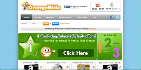 Sites like orangebidz