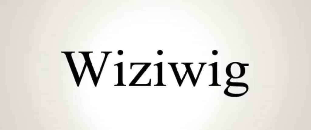 sites like wiziwig