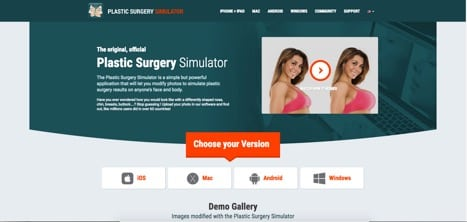The Plastic Surgery Simulator