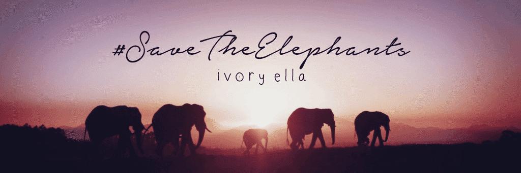 Stores Like Ivory Ella